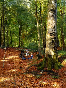 Peder Mørk Mønsted - The Woodland Glade