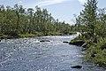 Peltojoki, july 2007 - panoramio - Risto Varhe (1).jpg
