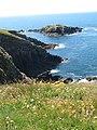 Penpleidian (island), Bae Caerfai bay, S of Tydddewi (St David's), Sir Benfro (Pembrokeshire), Cymru (Wales) 07.jpg