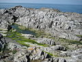 Pensport Rocks - geograph.org.uk - 1421854.jpg