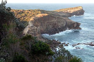 Kattang Nature Reserve Protected area in New South Wales, Australia