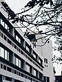 Peter Panschool, Sint-Gillis, Brussel, gevel Retoricastraat 13.jpg