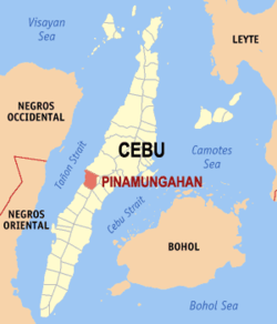 Map of Cebu with Pinamungahan highlighted