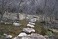 Piedras - panoramio (2).jpg