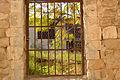 PikiWiki Israel 45958 Environment of Israel.jpg