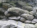 Pillow Lava SSSI Chipley Quarry closeup - geograph.org.uk - 1187277.jpg