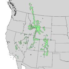 Pinus flexilis range map 1.png