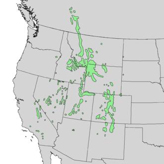 Pinus flexilis - Image: Pinus flexilis range map 1
