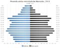 Piramida wieku Wyrzysk.png