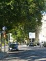 Plàtans de la carretera de Mataró P1510692.jpg