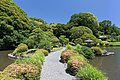 Plant-covered walkway crossing a pond in Shinjuku Gyoen National Garden a sunny day with blue sky Tokyo Japan.jpg
