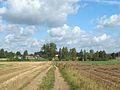 Podlaskie - Korycin - Przesławka 20110925 01.JPG