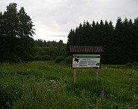 Poland. Gmina Pasym. Forests 005.JPG