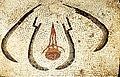 Pompeii - House of Menander - Caldarium - Mosaic 3.jpg