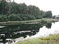 Pond behind Proletarsky Park (5) - panoramio.jpg