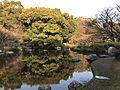 Pond of Miyazaki Central Park 4.jpg