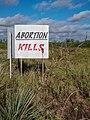 Pro Life Roadside Sign in Ballinger, Texas (30683444688).jpg