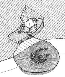 Pesca Al Cerco Wikipedia La Enciclopedia Libre
