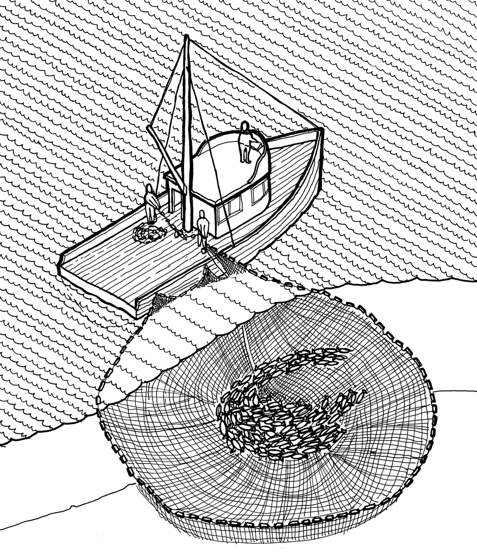 Purse seine illustration, Historic American Engineering Record