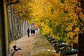 Quai des Tuileries (2369240370).jpg