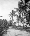 Queensland State Archives 1256 The Kiosk Green Island near Cairns c 1935.png