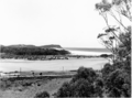 Queensland State Archives 4684 View from Currumbin Hill June 1952.png