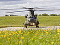 RAF Chinook Mark 6 Helicopter MOD 45158784.jpg