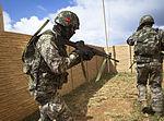 ROK Marines Participate in Island Viper 140529-M-QH615-037.jpg