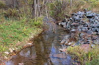 Raccoon Creek looking upstream.JPG