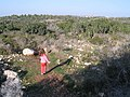 Ramat-ha-Nadiv-manor-trail-835.jpg