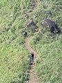 Ranipuram trekking views 2018 (72).jpg