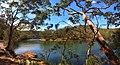 Reids Flat - panoramio (1).jpg