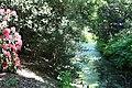 Rhododendronpark Bremen 20090513 138.JPG