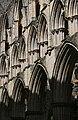 Rievaulx Abbey (476932520).jpg