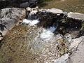 Rishikesh harikempty fallsdwar (380).JPG