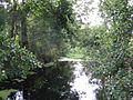 River Colne at Colney Heath - geograph.org.uk - 32819.jpg