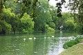 River Road Park.jpg