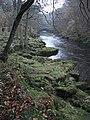 River Wharfe near Bolton Abbey - geograph.org.uk - 1050413.jpg