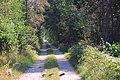 Road - panoramio (192).jpg