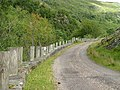 Roadside Wall and Posts - geograph.org.uk - 233590.jpg