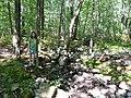 Robert Frost Farm - Hyla Brook (5038878205).jpg
