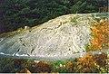 Roche Moutonnée near Dulnain Bridge - geograph.org.uk - 951952.jpg