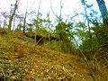 Rock Outcrop - panoramio (1).jpg