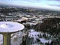 Roihuvuori water tower from air.jpg