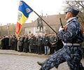 Romania march.jpg