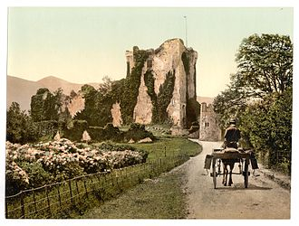 Ross Castle - Ross Castle in the last decade of the 19th century
