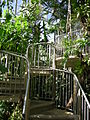 Royal Botanic Gardens, Sydney 02.JPG