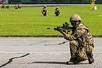 Royal Marines, commando assault demo (27834767953).jpg