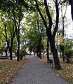 Rudnik nad Sanem - park (01).jpg