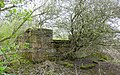 Ruins at Blacksyke Tower, Caprington, East Ayrshire.jpg
